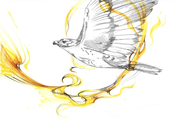 Ascending Hawk